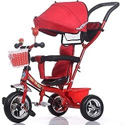 PLDDY sillas de paseo Carrito de bebé para niños Triciclo Cochecito / 1-3-5 años Bebé Cochecito de bebé Cochecito de bebé (Color : B)