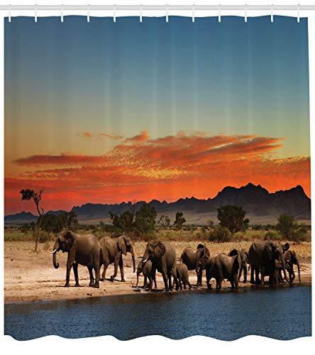 ABAKUHAUS Elefant Duschvorhang, Afrika Safari Wildlife, mit 12 Ringe Set Wasserdicht Stielvoll Modern Farbfest und Schimmel Resistent, 175x200 cm, Hellblau Orange Braun
