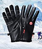 SUNLMG Guanti da Sci Winter Snowboard Impermeabile Neve Touchscreen Caldo Guanti da Uomo per Il Tempo Libero Ciclismo Correre attività all'aperto,XL
