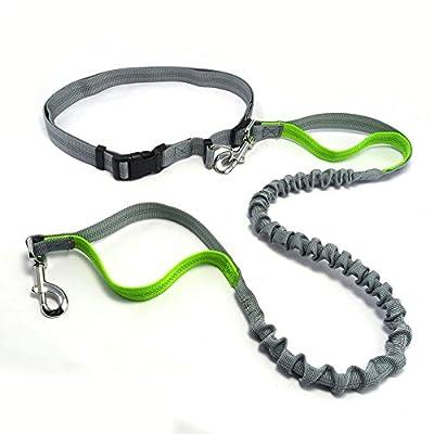 Multifunktion Hundeleine Jogging-Leine mit reflektierendem Streifen aus Nylon hoch elastische Hunde Leine 120cm Übungsleine für große,mittlere und kleine Hunde