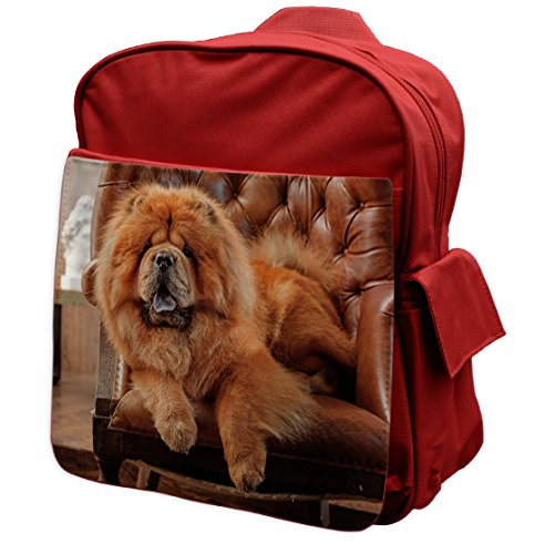 chow-chow-dog-animal-red-rucksack-backpack-085