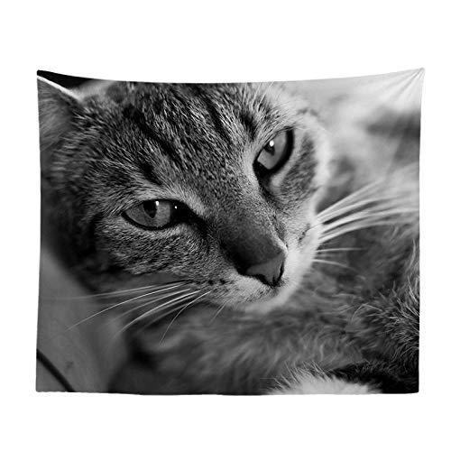 jtxqe Carino Serie Animale Gatto casa Pittura Soggiorno Camera da Letto Comodino Sfondo Muro di Arte arazzo 245 150-230