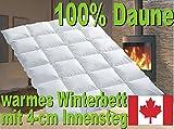 Warmes Winter Daunen Kassettenstegbett Daunendecke 100% Natur Daunenbett 135x200 -