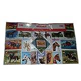 Pferd Pferde, weltweit Briefmarken aus der ganzen Welt, Collectible set 100Stück Briefmarken. Souvenir/Speicher/MEMORIA. 100verschiedene Briefmarken. timbre-poste/Briefmarke/francobollo/Sello (Einkaufszentrum) de CORREOS.