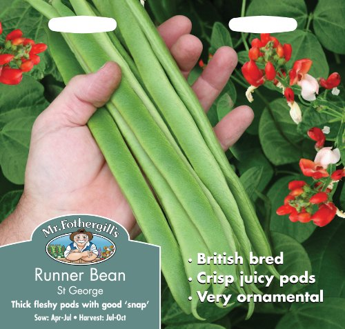 mr-fothergills-19257-runner-bean-st-george-seeds