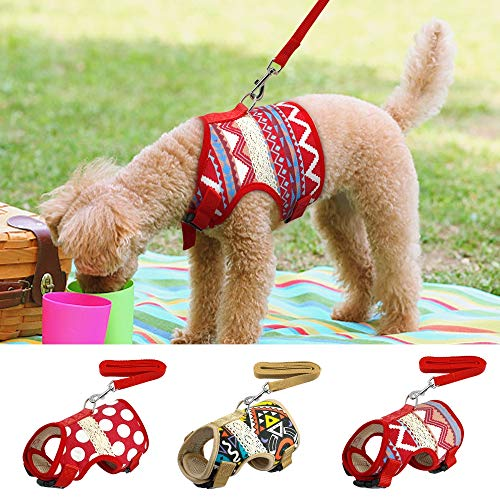 HHY-C Haustier Weste Geschirr Leine Set Atmungsaktives Hundegeschirr aus Nylon, 120 cm Leine für Welpen-Kätzchen mit kleinen, mittelgroßen Hunden,C,S