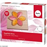 Rayher 70024000 Bastelset Nagelbild Motiv Blüte Holzplatte, natur, 14 x 14 x 0,9 cm, 3 Stränge Garn in den Farben gelb und rosé, 166 Ziernägel, Fadenspannbild
