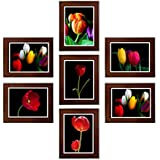 DIY Photo Frames With FREE Floral Posters Set Of 07 Pcs In 6x4 Inches Size