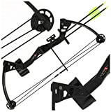 Compound Bow Arrows Review and Comparison