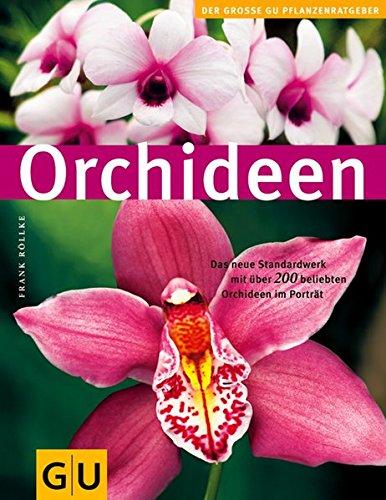 orchideen-gu-pflanzenratgeber