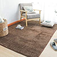 AZXC Carpet Modern Contemporary Hand Carved Home Sofa Coffee Table Mat Durable Rug Soft Carpet (80x180cm),Brown