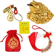 BWinka 3Pcs Feng Shui Coins Money Frog Chinese Charm and Feng Shui Brass Wu Lou with Coins Keychain for Home O