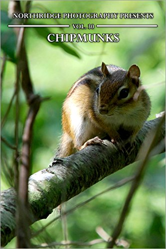 Chipmunks (Northridge Photography Presents Book 30) (English Edition)