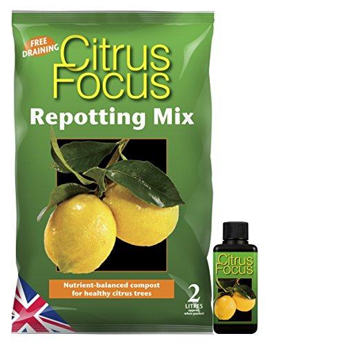 citrus-focus-repotting-mix-2-litre-bag-citrus-focus-100ml-feed