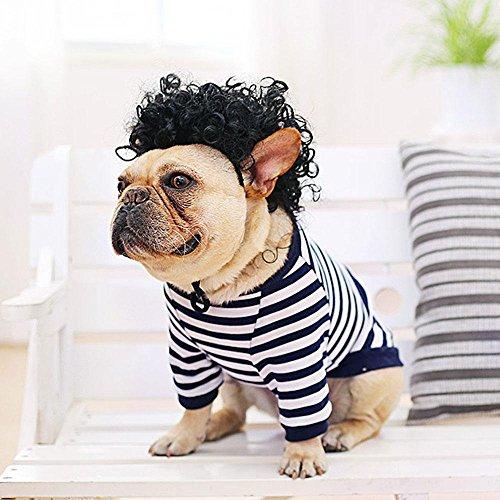 et-shirt Perücke-Installationssatz, gestreiftes T-Shirt u. Nettes gelocktes Haar mit justierbarem Streifen für Welpen-kleiner Hund französische Bulldogge Bichon Pug (Nette Perücken)