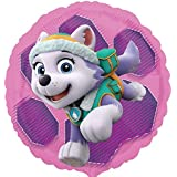Patrulla Canina - Globo círculo Skye y Everest (Anagram 34088-01)