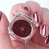 Rrimin 2g Nail Mirror Powder Beauty Glitter Powder Nail Powder(Rose Gold)