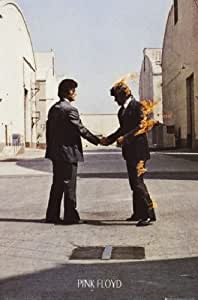 1art1 54182 Pink Floyd - Wish You Were Here Poster 91 x 61 cm