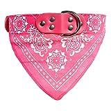 probeninmappx Hundehalsband Haustier Schnalle Schal Turban PU Leder Gürtel Halskette, Rosy, 38 * 1 cm