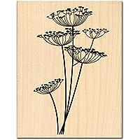 Florilèges Design FH112001 - Timbro per scrapbooking, fantasia: fiori, 13 x 10 x 2,5 cm, colore: beige