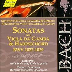 Viola da Gamba Sonata in G Minor, BWV 1029: II. Adagio