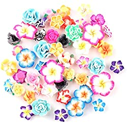 50 Stück Tropische Blumen Anhänger Hawaiianisch BaliPlumeria Harz Cabochons flache Rückseite Perlen für Miniatur Feengarten Zubehör Scrapbooking Home Decor Supplies