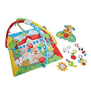Fisher-Price Laugh and Learn Puppy'n Pals Learning Gym from Mattel UK (FOB account) - DONGGUAN DONGYAO Factory Code