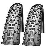 Schwalbe Rapid Rob Lot de 2 pneus pour VTT 26' x 2,25'