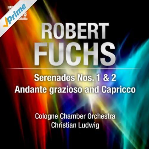 Serenade No. 2 in C Major, Op. 14: II. Larghetto