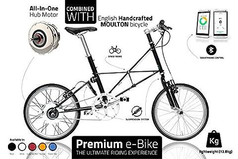 Premium Vélo électrique–exclusif Ebike pour une utilisation quotidienne–léger électrique de vélo–