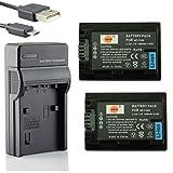 Batería 900mAh tipo NP-FP30 NP-FP50 NP-FP51 Para Sony DCR-DVD202E