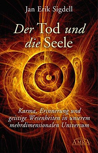 Der Tod und die Seele: Karma, Erinnerung und geistige Wesenheiten in unserem mehrdimensionalen Universum