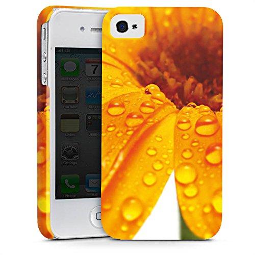 Apple iPhone X Silikon Hülle Case Schutzhülle Blume Tropfen Orange Premium Case glänzend