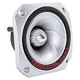 ILS - Piezo Horn Speaker Tweeter 30KHZ Piezoelectric Head Driver Loudspeaker Treble