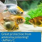 API AMMO-LOCK Freshwater and Saltwater Aquarium Ammonia Detoxifier 473 ml Bottle 14