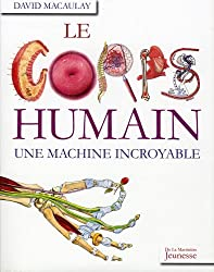 Le corps humain : Une machine incroyable
