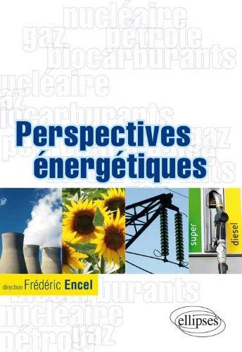Perspectives énergétiques par Frédéric Encel