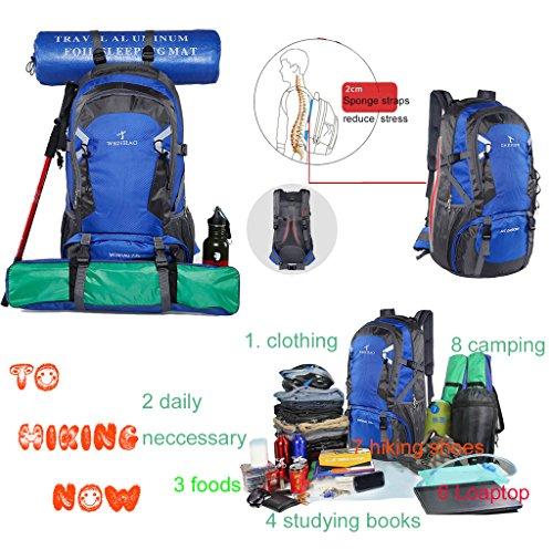Zaino Da Trekking Unisex Super Moderno In Nylon Impermeabile Zaino Da Campeggio / Borsa Da Viaggio Zaino (70l) Verde