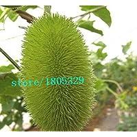 50pcs / bag di frutta ornamentali semi