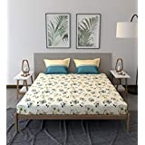 Trident Comfort Living 100% Cotton Double Bedsheet with 2 Pillow Covers Melina Blue, Queen