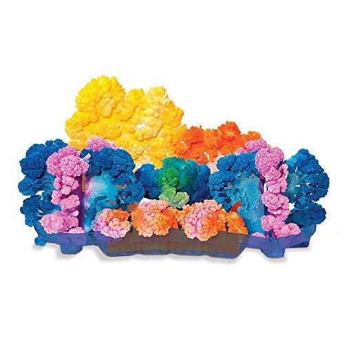 LatestBuy Magic Crystal Coral Reef -