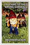 Blechschild Spruch Motherfucker Gartenzwerg 20 x 30cm Reklame Retro Blech 1192