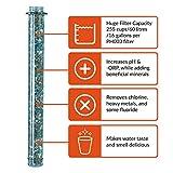 Invigorated Water – pH REVIVE – Trinkflasche mit Wasserfilter für basisches Wasser – mit Transporthülle – Aquablau – 750 ml - 4