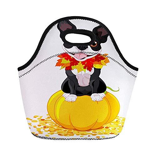 Dog Boston Terrier sitzt auf Kürbis Halloween-Kostüm isolierte Neopren-Lunch-Taschen für Frauen für Arbeit Erwachsene Herren Kinder Picknick Lunchbox Modern Lunch-Taschen (Arbeiten, Für Frauen Halloween-kostüme)