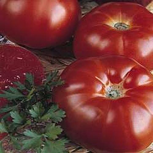 20 graines de Paris Marmande Heirloom Jardins de tomates Simplement Grown Magnifiquement