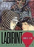 Labirinto e altre storie