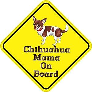 Gadget vari sui Chihuahua