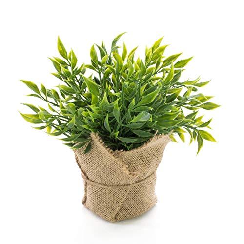 artplants.de Fragon Faux Houx Artificiel Vitus dans Son Sac de Jute, Vert, 22cm - Plante aromatique...