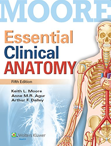 Fundamentos de anatomía con orientación clínica eBook: Keith L ...