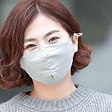 Xiumin Mund Maske,Dreidimensionale Falten staubdichte Herbst und Winter warme, einstellbare Baumwollmaske, Silbergrau